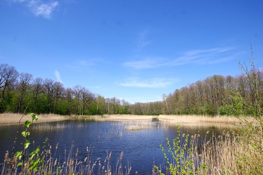 Przyroda wokół Wrocławia