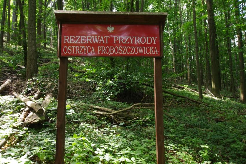 Rezerwaty Sudetów
