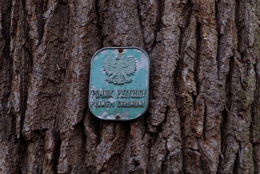 Bilans Ochrony Przyrody 2018 na Dolnym Śląsku
