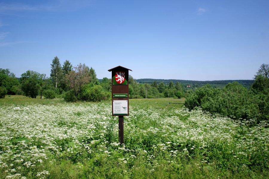 Czeskie Rezerwaty w Górach Orlickich
