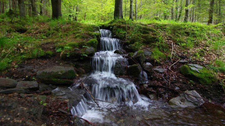 Potoki i Krasy Doliny Kleśnicy